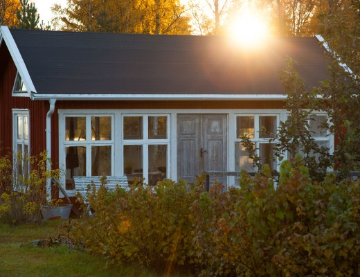 Växthuset en oktobermorgon
