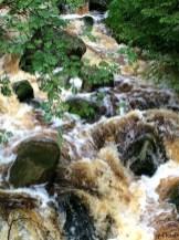 reißende Ströme