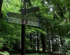 Schöne Wandermöglichkeiten rund um Otzenhausen