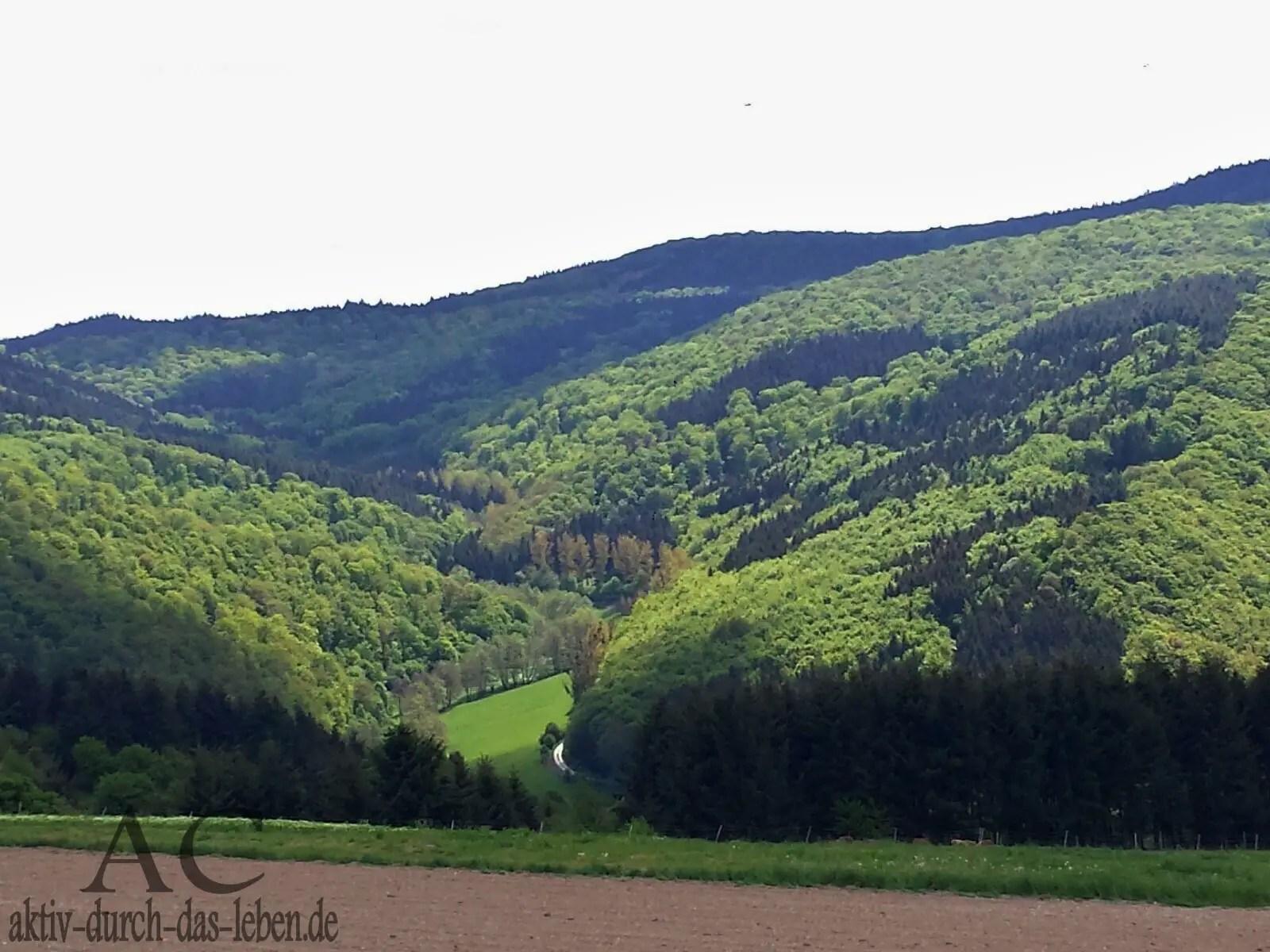 Tolle Landschaft rechtsrheinisch auf der Hinfahrt