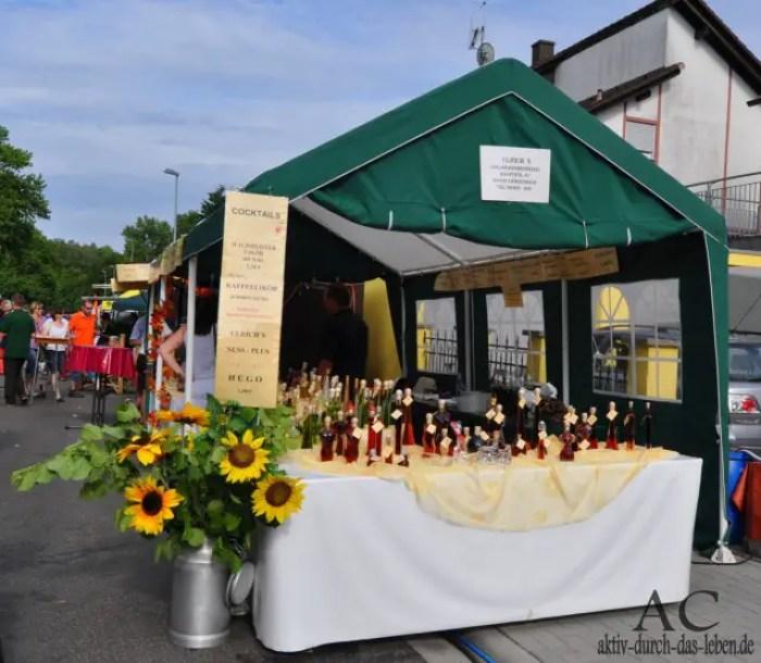 Rheinland-Pfalz-Tag Ramstein-Miesenbach
