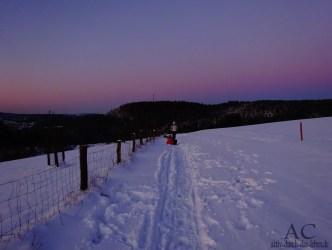 Bei Daun im Winter, Eifel