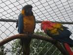 Tiererlebnispark Bell