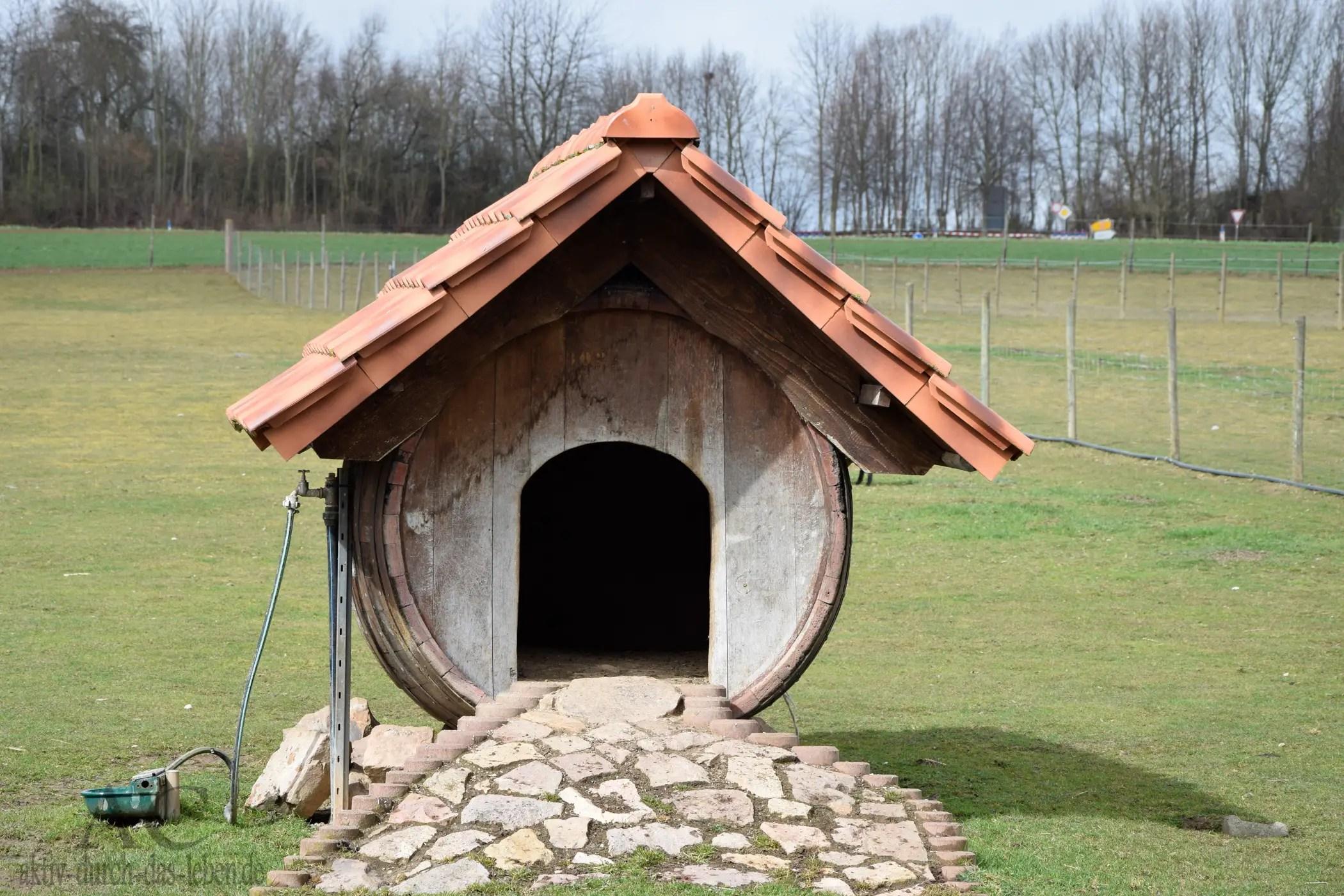 Ein Weinfass als Ziegenhaus :-D