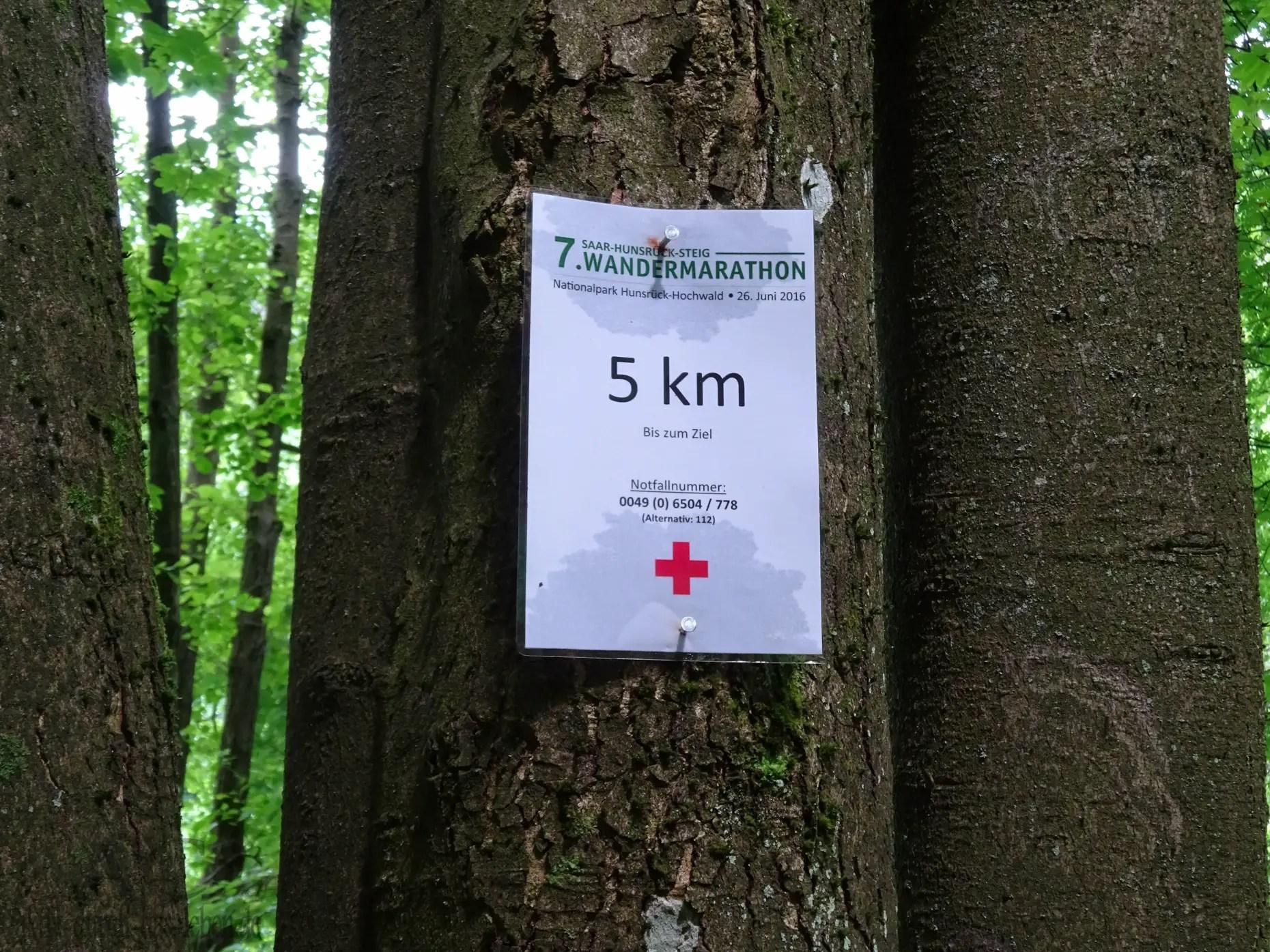 Nur noch 5km