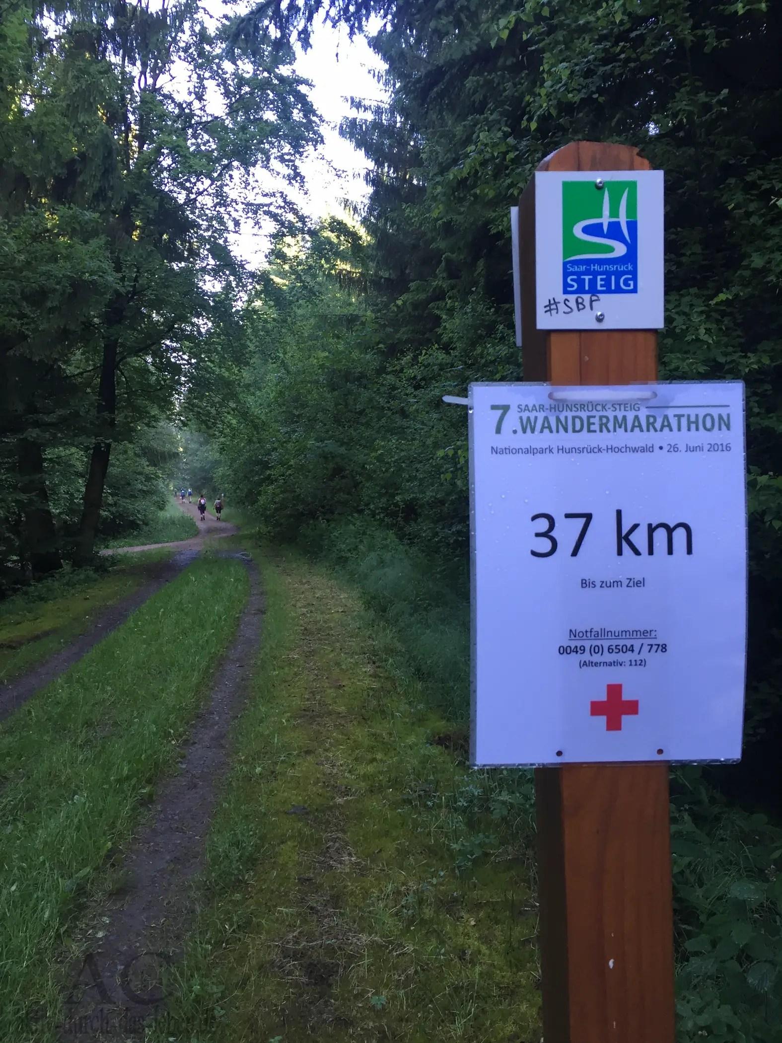Vorbericht: Der 10. Saar-Hunsrück-Steig Wandermarathon 02.06.2019
