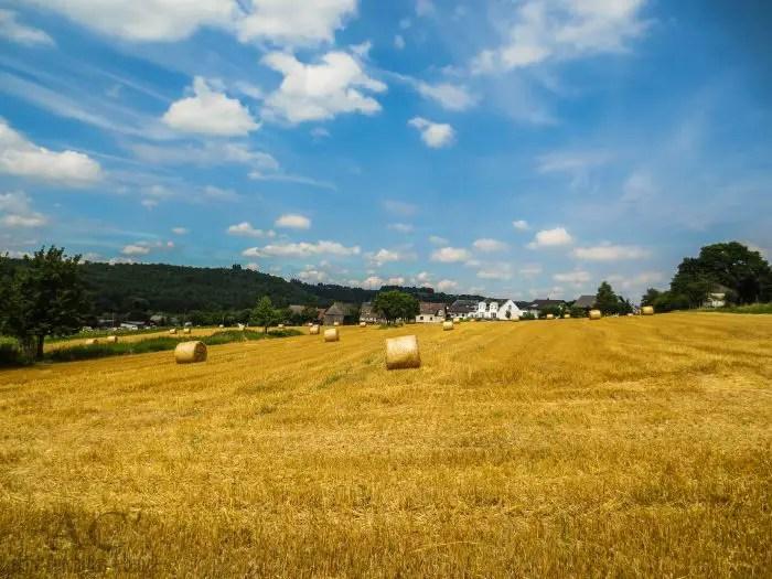 Traumschleife Heimat - Gehlweiler