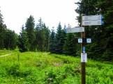 Wandermarathon Saar-Hunsrück-Steig 2016 5