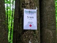 Wandermarathon Saar-Hunsrück-Steig 2016 13