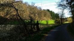 3-Täler-Wanderweg 10