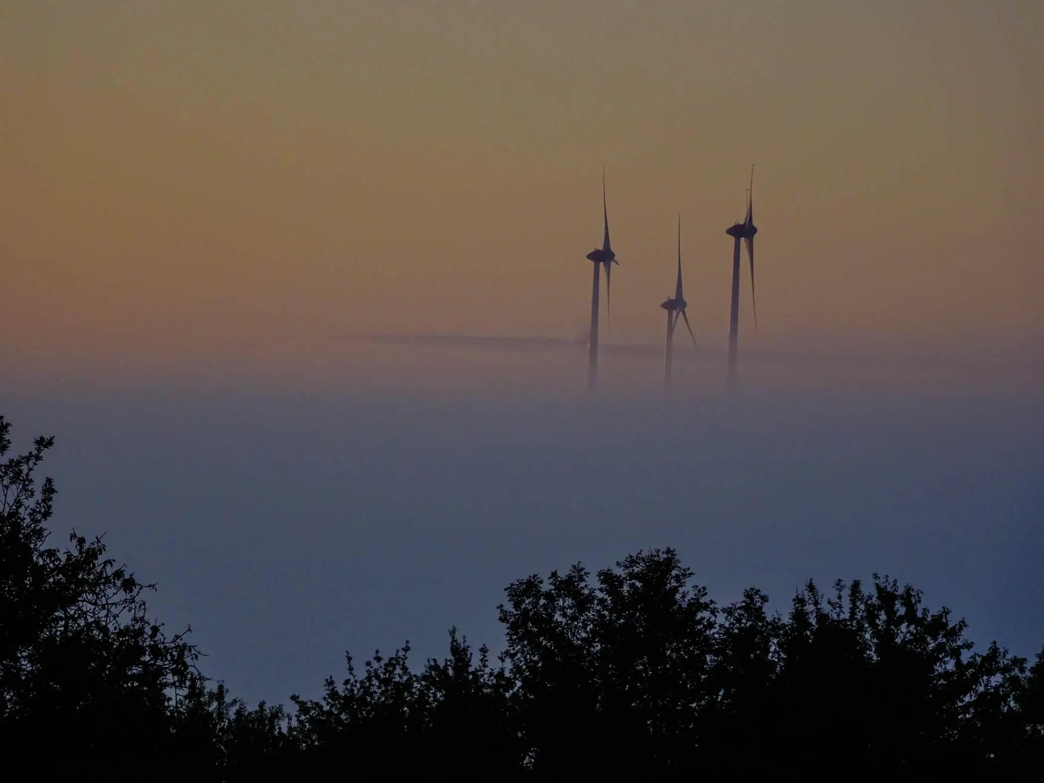 Der Morgen erwacht in der Pfalz