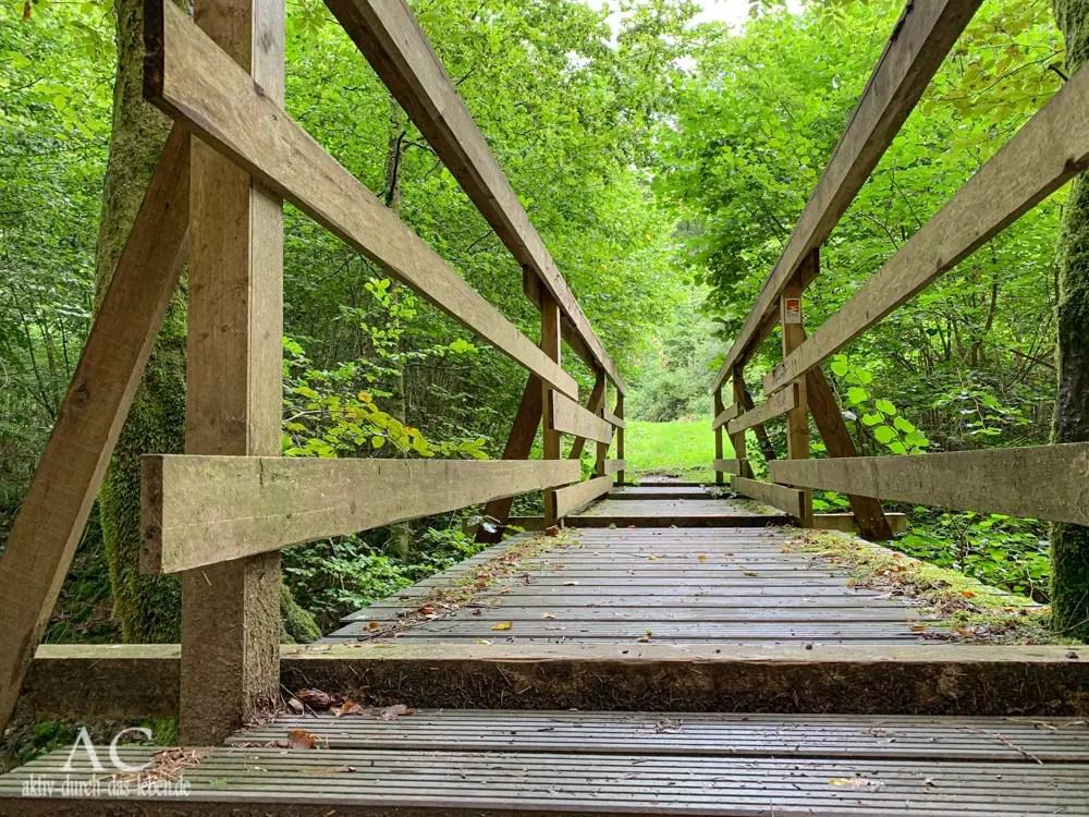 Bergschluchtenpfad Ehrenburg – wildromantisch und anspruchsvoll