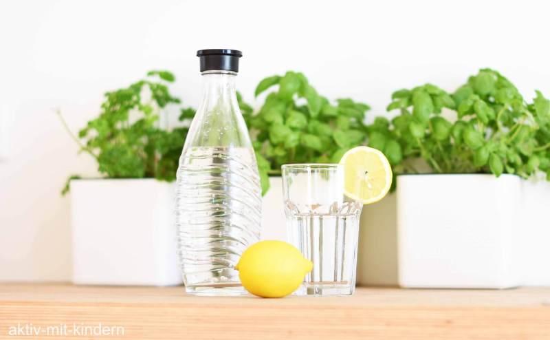 SodaStream Wassersprudler mit Glasflasche