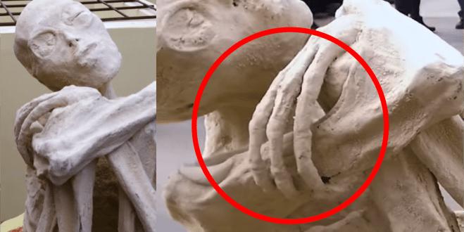 nazca mummy