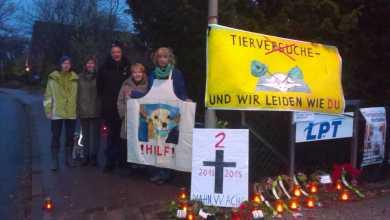 Photo of LPT-Neugraben erhält keine neuen Genehmigungen