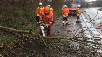 Photo of Weitere Sturmeinsätze forderten die Feuerwehren des Landkreises Harburg