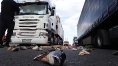 Photo of Lastwagen verliert Fischabfälle auf der Autobahn