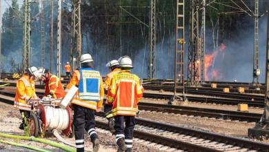 Photo of Großer Waldbrand bei Maschen hält Feuerwehr in Atem