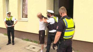 Bild von Halter kümmert sich nicht – Polizei holt Bulldogge aus Wohnung