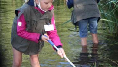 Bild von Natur hautnahe erleben beim Aktionstag der Grundschule Sprötze-Trelde
