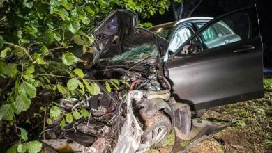 Bild von Fahrt mit geliehenem Mercedes endet am Baum