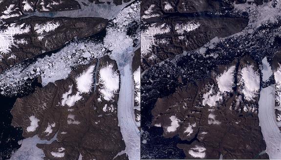Solda 26 Haziran 2010 (buzul parçalanmadan önce) ve Sağda 13 Ağuston 2010 (parçalanmadan sonra) - Petermann Buzulu