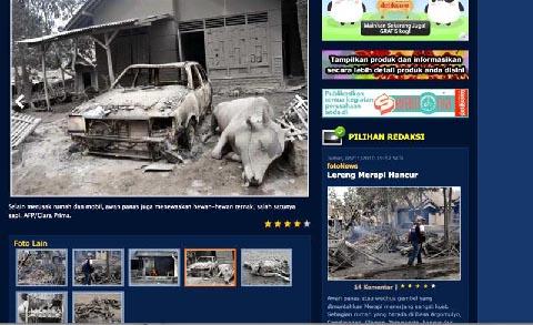 Selain manusia, rumah dan mobil, awan panas Merapi juga menewaskan hewan-hewan ternak, salah satunya Sapi.