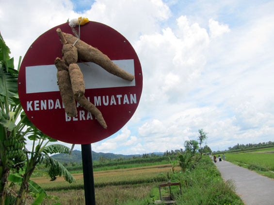 The cassava on the road signs.
