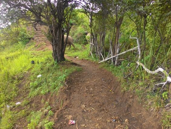 Jalan setapak menuju Puncak Thailand (Puncak Pulau).