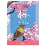 桜コースには、キッチンウェアやコスメを含む世界の雑貨を多くラインナップ。