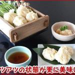 北海道のエビをふんだんに使用し、蒸しても揚げても 北海えびシュウマイ 8個入