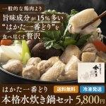 はかた一番どり本格水炊き鍋セット(5人前) 送料無料 鍋セット 産地直送 福岡 博多