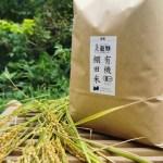 富山の里山の棚田でアイガモ農法も交えて栽培。有機棚田米てんたかく10kg