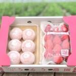 いちご大福専用の白餡にコンデンスミルクを加えた絶品特製大福とあまおう苺をセット