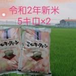 特別栽培米です。令和2年産ミルキークイーン10キロ精米
