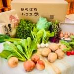 こどもの味覚を育むお米・野菜セットM (お米3kg、野菜約8種、卵10個)
