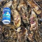 北海道 茅部郡森町 食べ放題向け バラ牡蠣 いっぱい7kg(40個くらい) 生食