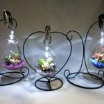 電球型のガラスに多彩な多肉植物の寄せ植え(ミニスポットライト、イーゼル付き)