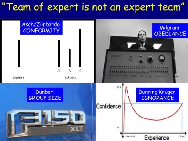A team of experts is not an expert team