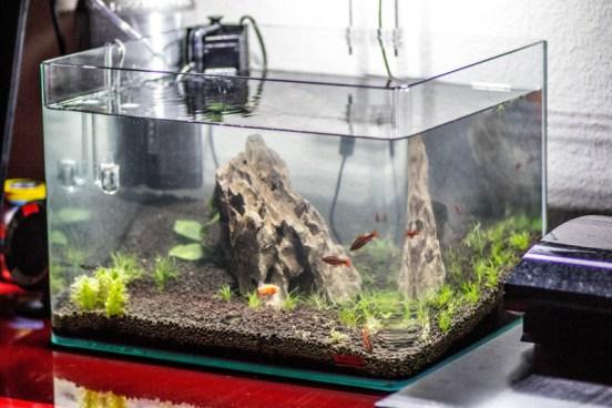 vnútorné akváriové filtre