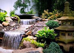 Дизайн прудов водоемов