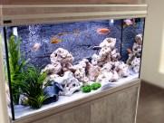 Дизайн аквариума 5