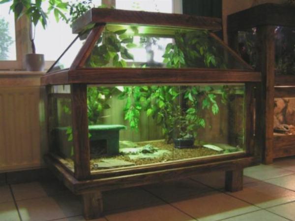 Аквариумные черепахи — аквариум для водной | AKVARON.RU