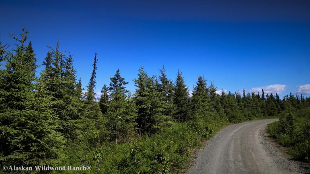 C3 Alaskan Wildwood Ranch®