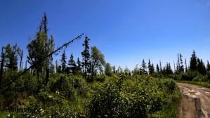 C27 Alaskan Wildwood Ranch®