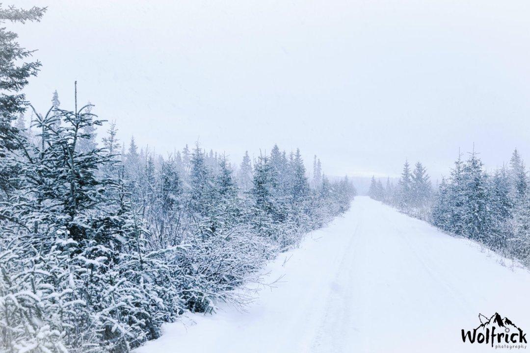 Winter at Alaskan Wildwood Ranch®-11