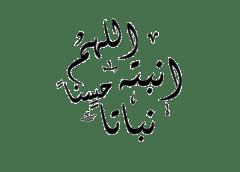 رُزق الأخ سـالم بن ابراهيم بن سـالم المحمـد آل بوعينين بـمولود ..