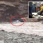 بالصور : إنقاذ 3 بريطانيين من سيول وادي لجب في جازان