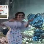 بالفيديو و الصور: حفل زفاف أسطوري لـ الشيخة شعاع آل ثاني في قطر