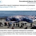 شاهد..العثور على كائن ضخم  وغريب على شاطئ يوتا